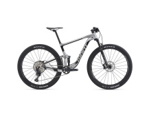 GIANT Anthem Advanced Pro 29 2 2020 rainbow silver/black