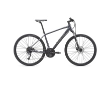 GIANT Roam 2 Disc 2019 charcoal/silver