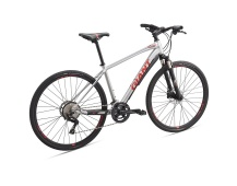 GIANT Roam 1 Disc 2019 silver/pure red/charcoal