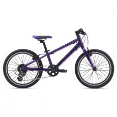 ARX 20-M21-Purple