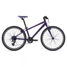 ARX 24-M21-Purple