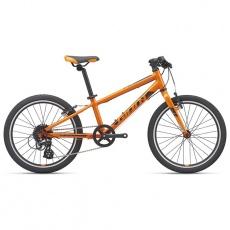ARX 20-M21-Orange