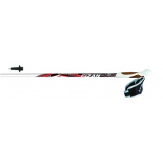 Nordic walking hole FIZAN NW PERFORMANCE red N01.C73W